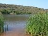 shongweni-dam-views-12