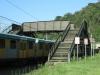 shongweni-delville-wood-station-s-29-50-03-e-30-44-07-elev-428m-4