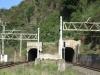 shongweni-delville-wood-station-s-29-50-03-e-30-44-07-elev-428m-5