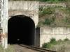 shongweni-delville-wood-station-s-29-50-03-e-30-44-07-elev-428m-6