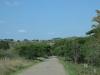 shonweni-reserve-entrance-s-29-51-33-e-30-43-47-elev-425m-4