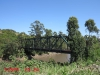 Mpenjati old River Bridge - S 30.58.004 E 30.16.499 Elev 0m (10)
