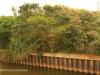 Scottburgh - Mpandinyoni River Bridges (15)