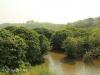 Umzinto River -   (10)