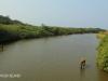 Umzinto River -   (18)