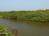 Umzinto River -   (7)