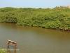 Umzinto River -   (8)