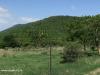 Spionkop-Mount-Alice-from-Woodlands-farm