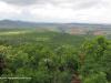 Spionkop-Mount-Alice-views-of-Spionkop-and-Vaalkrans-2