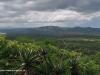 Spionkop-Mount-Alice-views-of-Spionkop-and-Vaalkrans-6
