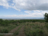 The-road-up-to-Mount-Alice-Spionkop-south-approach-4