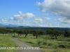 Spionkop Nature Reserve (101)