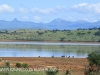 Spionkop Nature Reserve dam views (37)
