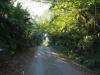 Stainbank Nature Reserve - Driveway (1)