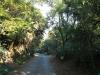 Stainbank Nature Reserve - Driveway (2)