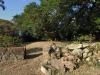 Stainbank Nature Reserve - Gardens (2)