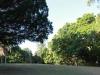 Stainbank Nature Reserve - Gardens (5)