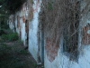 Stainbank Nature Reserve - Old outbuildings (15)