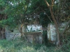 Stainbank Nature Reserve - Old outbuildings (24)