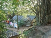Stainbank Nature Reserve - Old outbuildings (32)