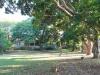 Stainbank Nature Reserve -  gardens (10)