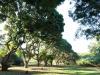 Stainbank Nature Reserve -  gardens (8)