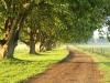 summerhill-road-from-hartford-1