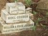 Swartberg Groenvlei Joyner Cemetery grave Noel Gordon Joyner 1917 son of William & Rose