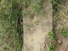 Swartberg Groenvlei Joyner Cemetery grave not readable