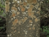 Swartberg Groenvlei Joyner Cemetery grave unreadable (1)