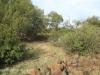 Swartberg Groenvlei Joyner Cemetery views (7)