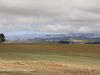 Swartberg Hlani Farm maize lands (3)