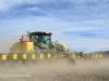 Swartberg Hlani Farm maize planting (4)