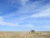 Swartberg Hlani Farm maize planting (5)