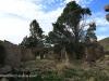Swartberg Hlani Farm old derelict farmhouse (6)