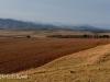 Swartberg Hlani Farm views of farm (2.) (1)