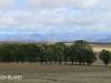 Swartberg Hlani Farm views of farm (2.) (2)