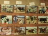 Swartberg Farmers Association sale images over the years (3)