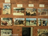 Swartberg Farmers Association sale images over the years (5)