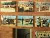 Swartberg Farmers Association sale images over the years (6)