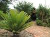 Tala Private Game Reserve - Aloe Lodge -  (3)
