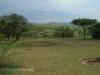 Tala Private Game Reserve - Aloe lodge -  (19)