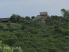 Tala Private Game Reserve - Aloe lodge -  (20)