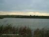 Tala Private Game Reserve - Dam Views -  (1)
