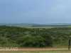 Tala Private Game Reserve - Landscape -   (2)