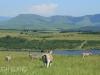 Tala Private Game Reserve - Landscapes -  (9)