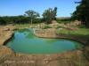 Tala Private Game Reserve - Picnic site - Pool  (1)