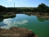 Tala Private Game Reserve - Picnic site - Pool  (2)