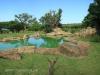 Tala Private Game Reserve - Picnic site - Pool  (3)