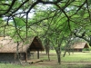 Tala Private Game Reserve - Picnic site - Pool - Bashers -  (7)